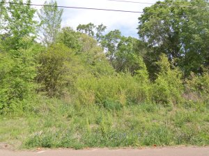 22 Rays Ave. – Land