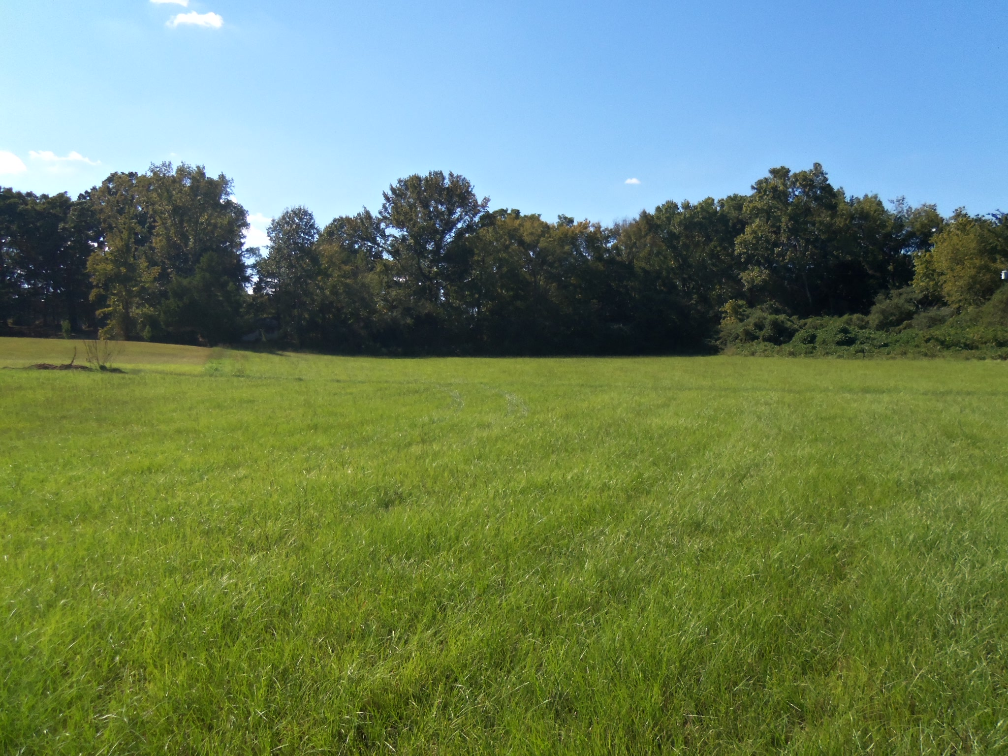 Montgomery County – 12.75 Acres